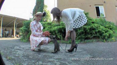 "Satin bitches play with raccoon babe - RDL - Sexfilm ""feuchte Mösen"""
